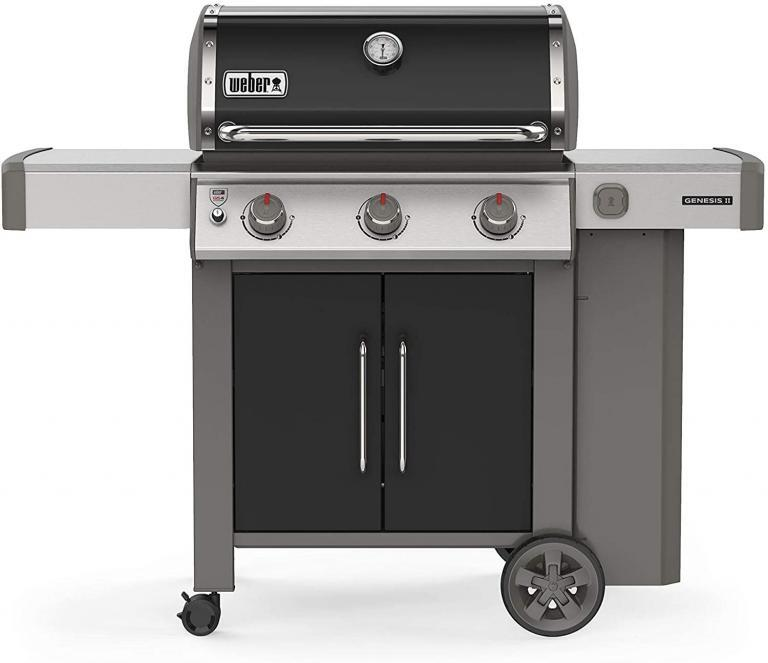 Weber Genesis II E-315 Review
